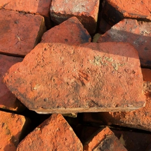 Special bricks